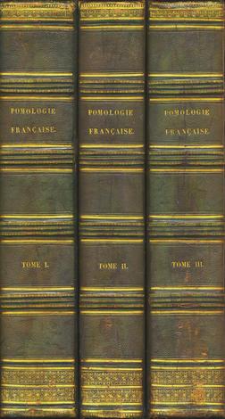 <strong>Pomologie Française.</strong>