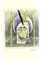 <strong>Fiori cosmici. 5 litografie originali a colori.</strong>