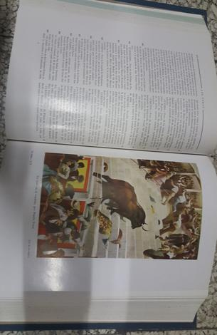 Los Toros.Tratado Técnico e Histórico.