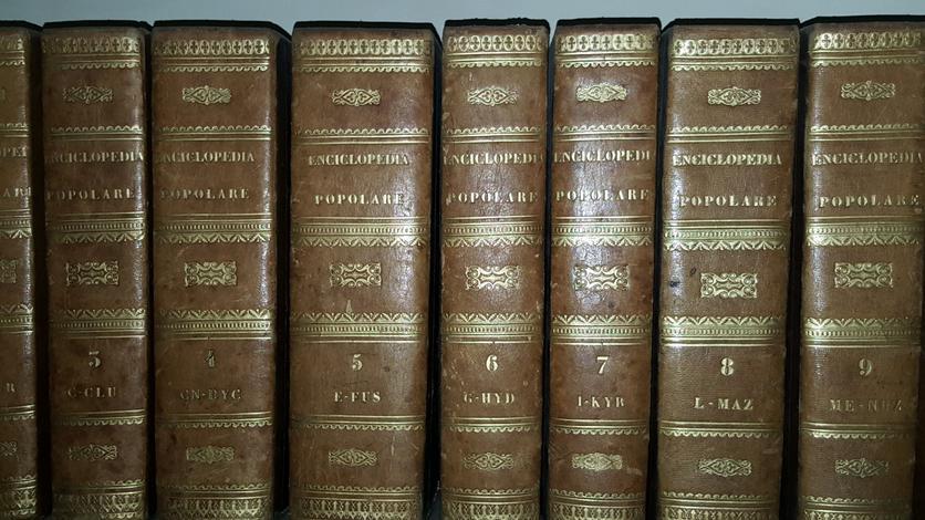 Nuova enciclopedia popolare dizionario generale di scienze, lettere, arti, storia, geografia, ecc. ecc.