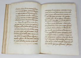 Gryphus purpuratus ita quam a Michaele Angelo Torciliano devoto calamo vestitus