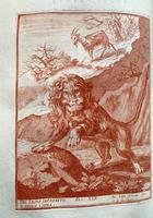<strong>Raccolta di varie favole - Recueil de diverses fables</strong>