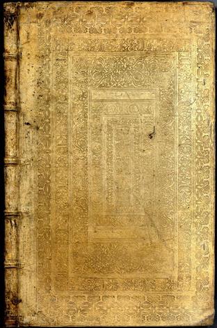 <strong>Sphinx Mystagoga, sive Diatribe Hierogliphica, qua Mumiae, ex Memphiticis Pyramidum adytis erutae...</strong>