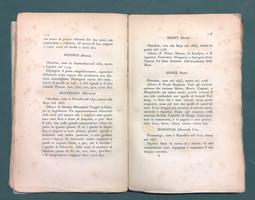<strong>Guida ossia dizionario portatile per gli amatori de'quadri della scuola fiamminga ed olandese.</strong>