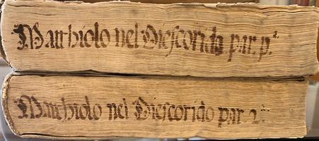 <strong>Dei discorsi...nelli sei libri di Pedacio Dioscoride Anazarbeo, della materia medicinale.</strong>