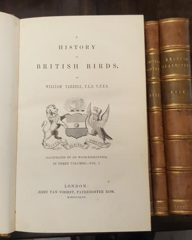 <strong>A history of British Fishes, Birds, Quadrupeds, Reptiles.-</strong> A general outline of the Animal Kingdom...