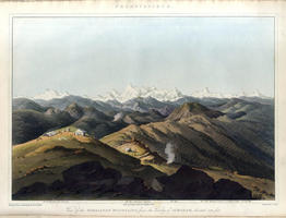 <strong>Illustrations of the Botany</strong> and other branches of the Natural History of the Himalayan Mountains, and of the Flora of Cashmere.