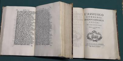 <strong>Contenente XX delle più rare Commedie citate da' Sig Accademici della Crusca.</strong>